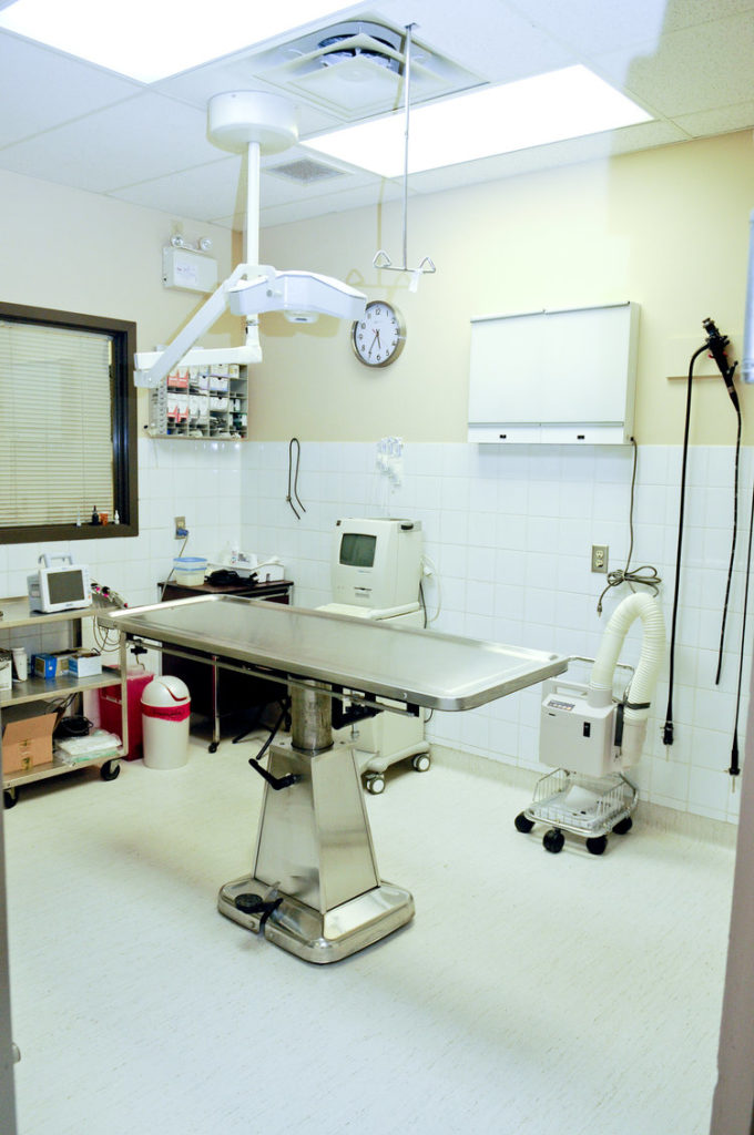 Hydraulic Surgery Table