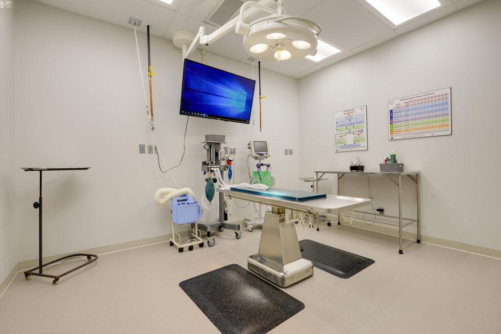 Surgery/Monitoring